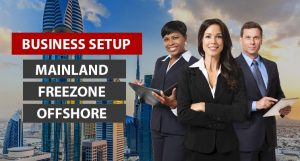 Why Small Businesses Need the Services of Business Setup Consultants?