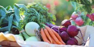 Tips on purchasing top quality organic food